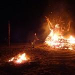 Burning Bush - Pheonix