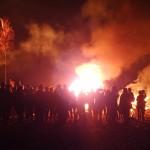 Burning Bush - Large Flames