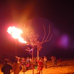 Burning Bush - Fire Bird