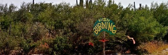 Burning Bush 2013 – La Ventana, BCS